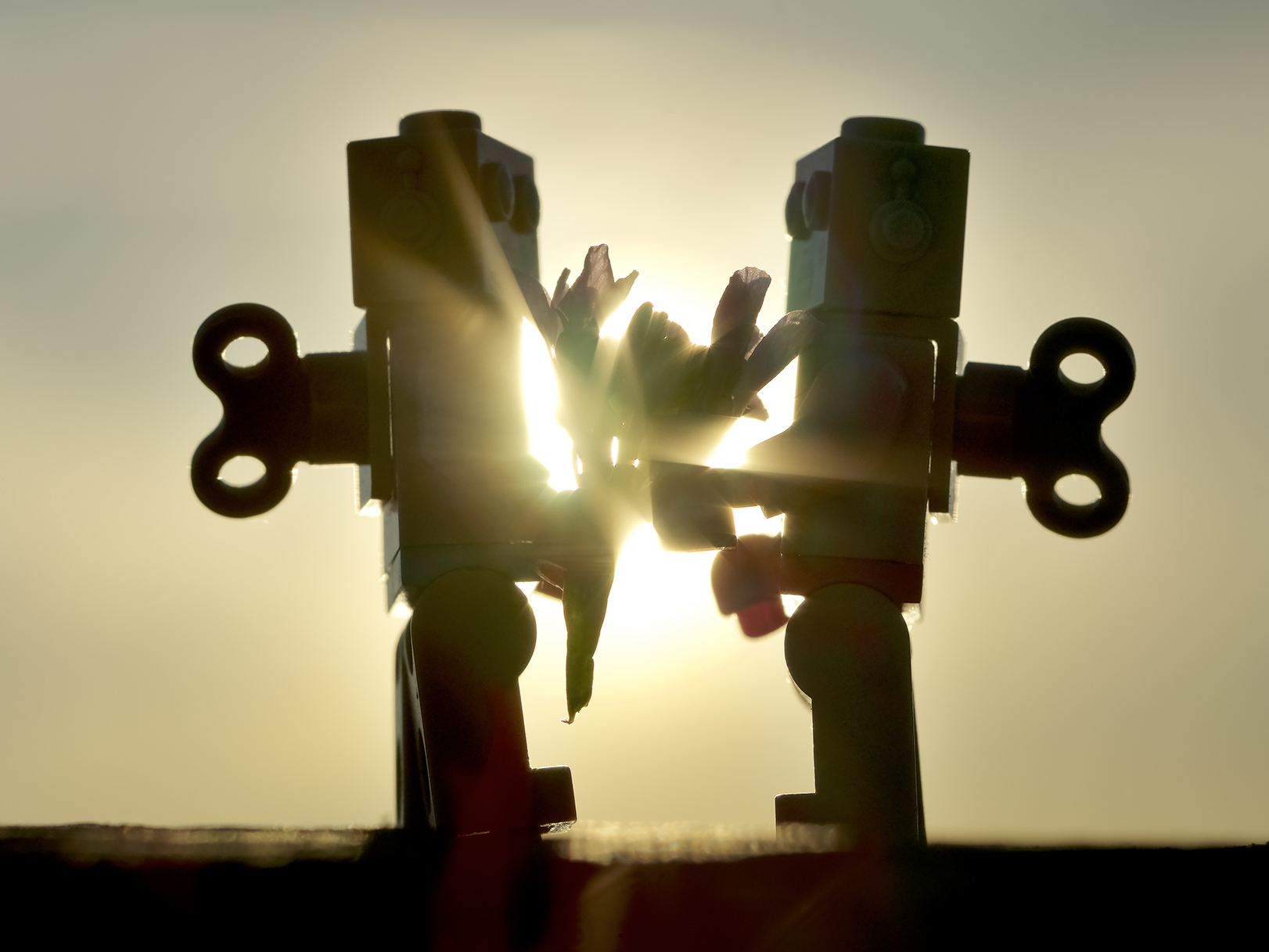 Musing's on Community, Belonging and Toy Photography