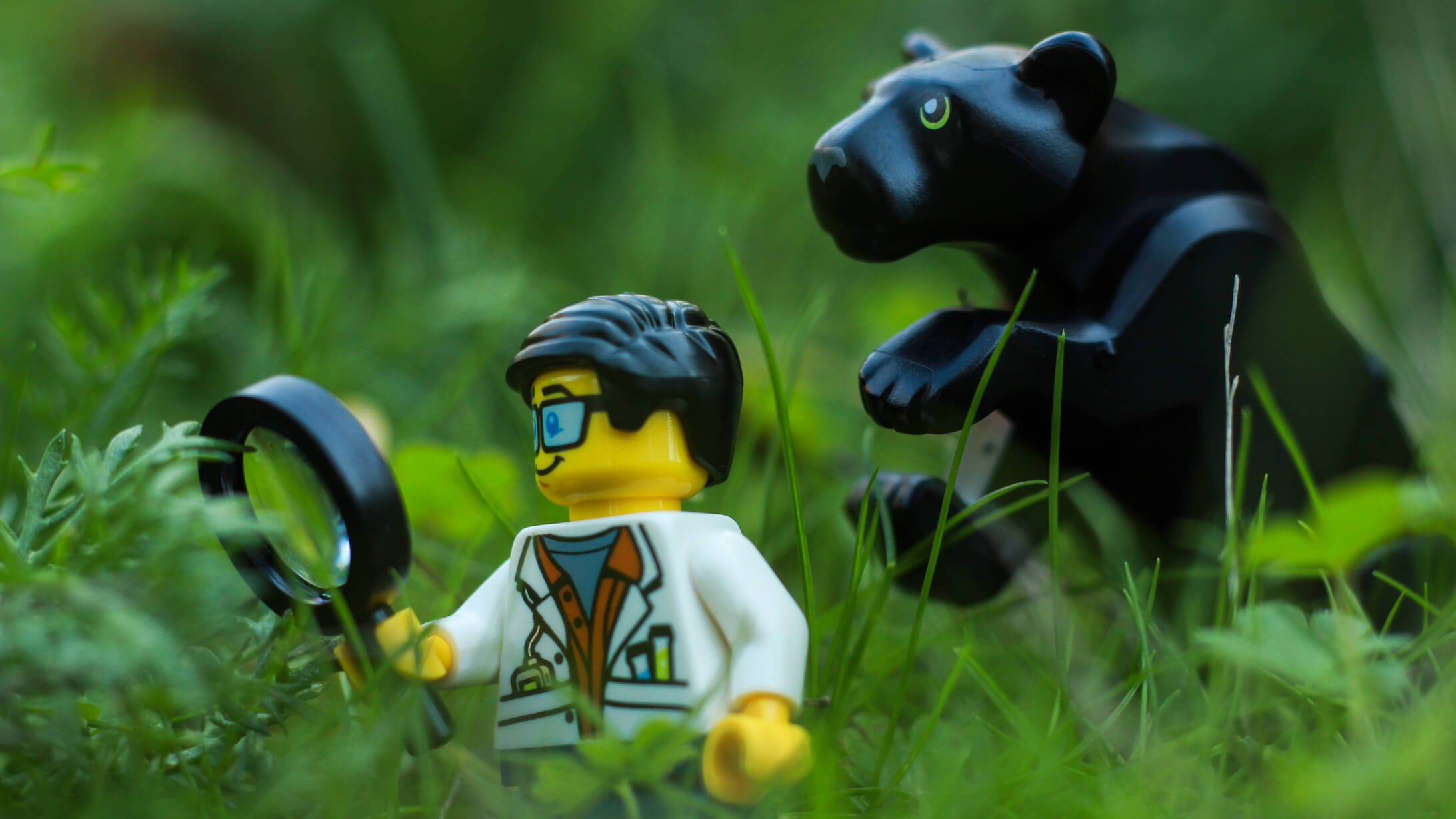 lego city jungle scientist panther
