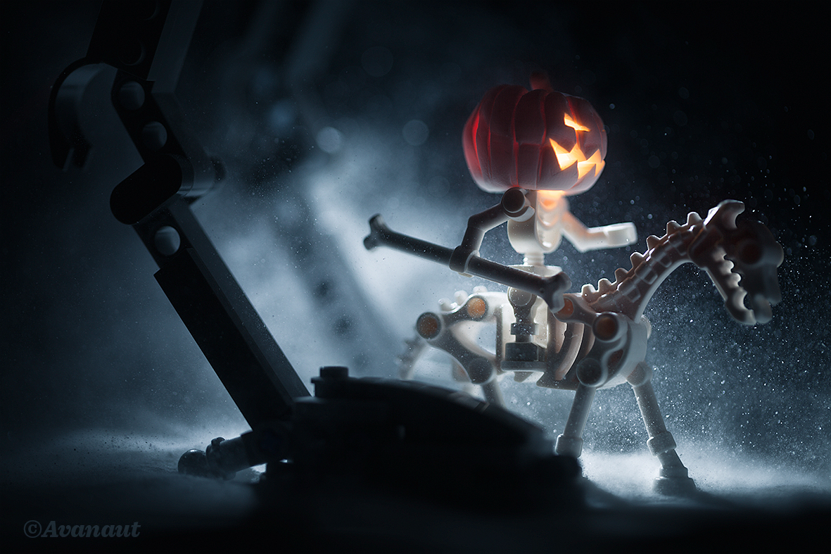 The Snow Pumpkin – a story told in six images