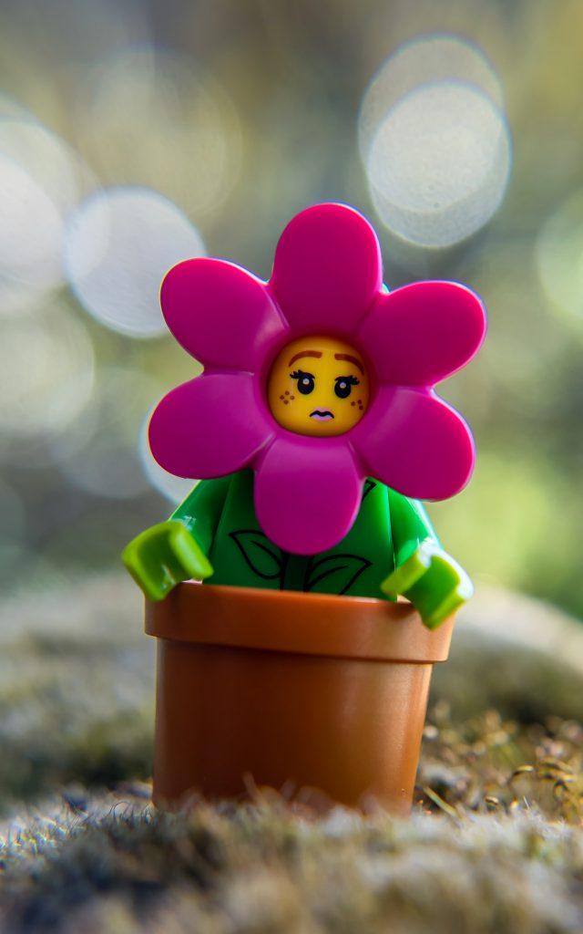 Series 18: Flowerpot Girl
