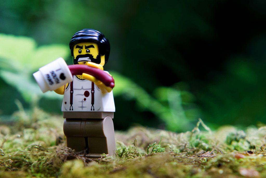 Oregon Toy Photography Safari: I came. I dipped. I conquered.