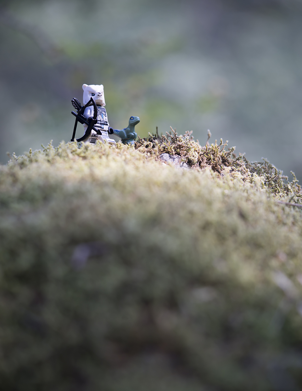 Lego-Chima-Love-Toy-Photography