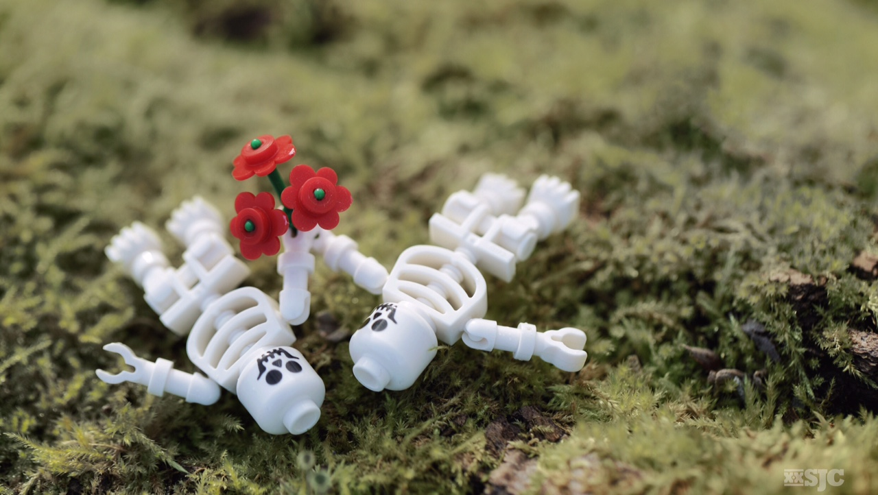 Two lego skeletons connected by the red lego flowers that they are holding show their love's endurance even in death.