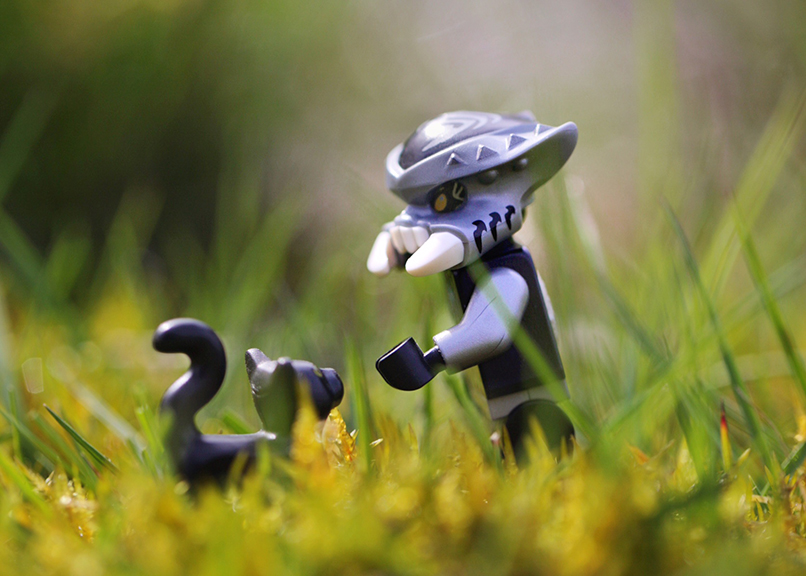 A lego scorpion makes friends with a black lego cat in the tall grass in this outdoor toy photograph.