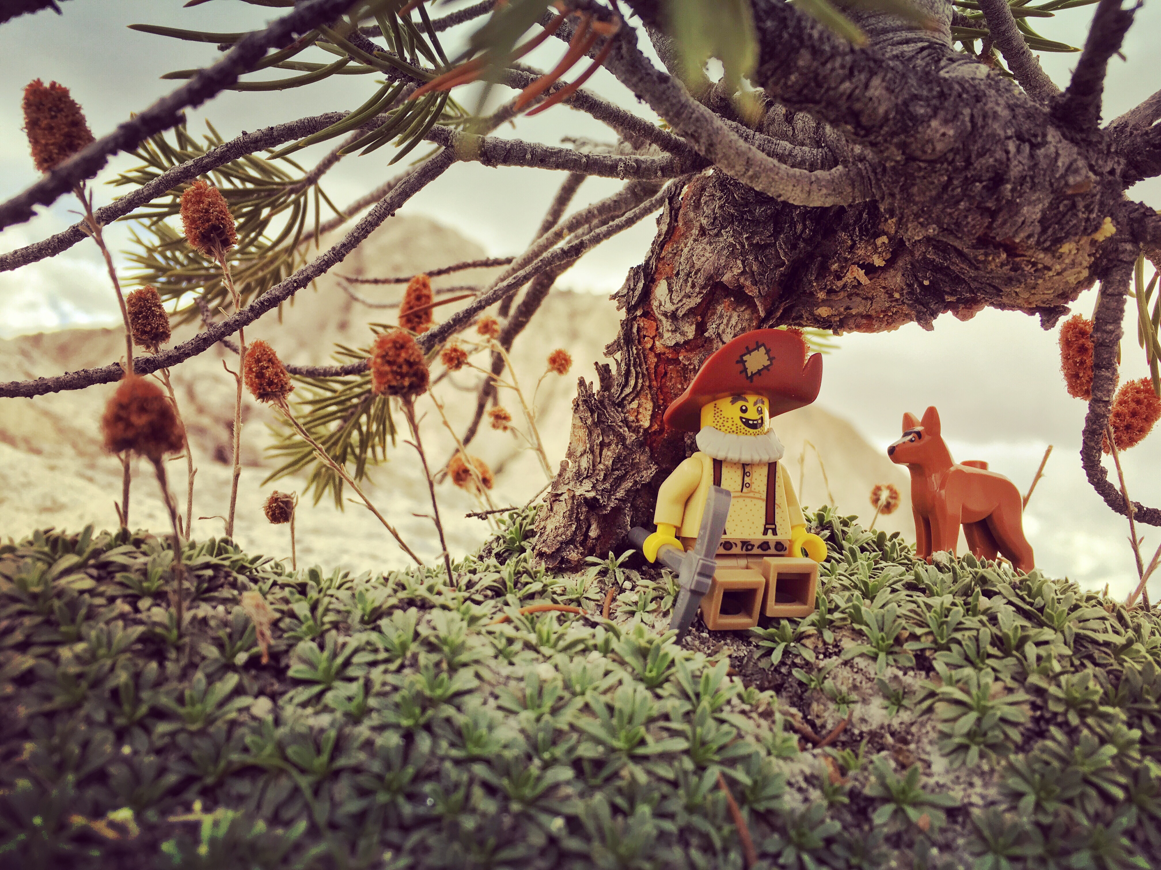 Character Development in LEGO Photography