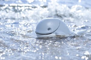 Duplo whale in the sea