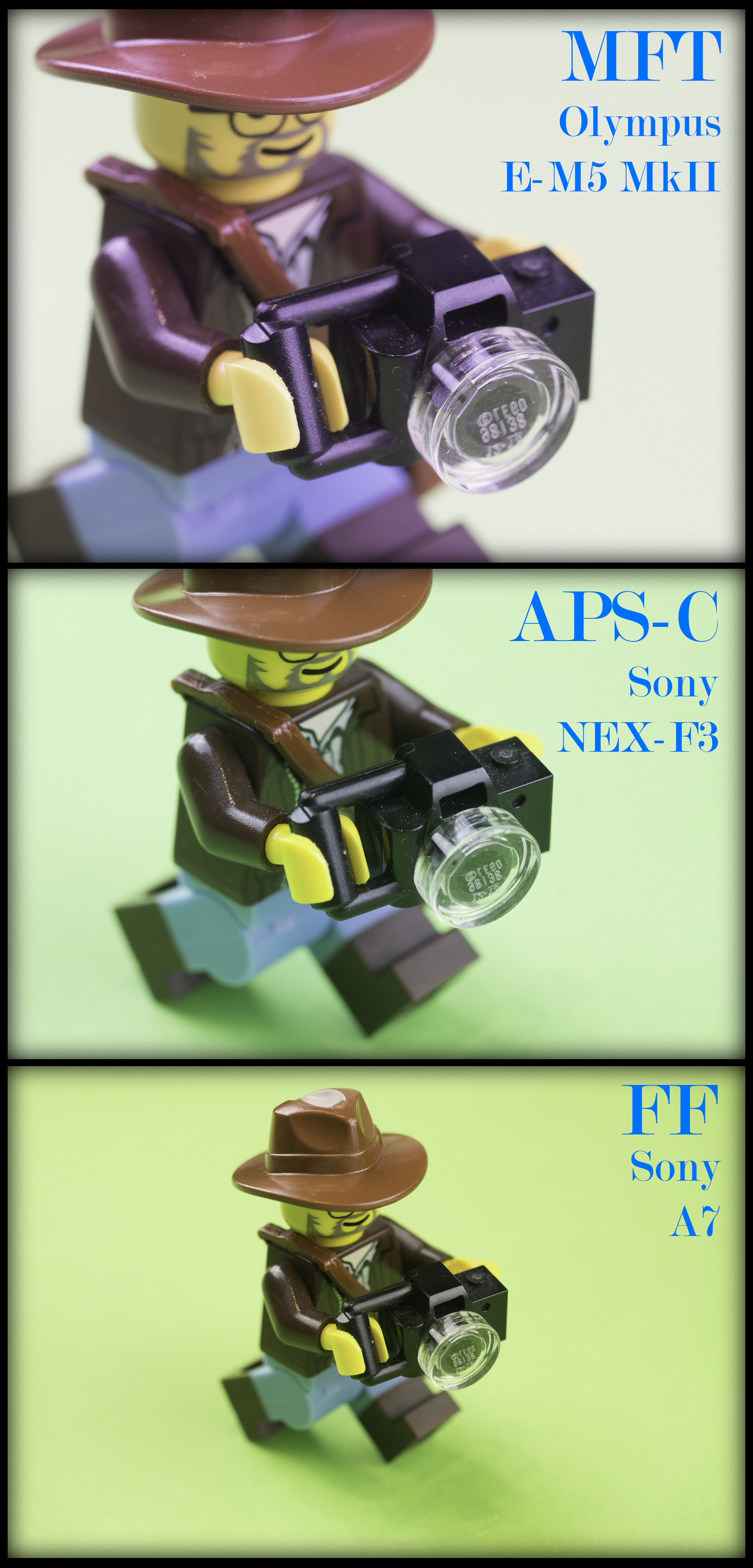 Sensor comparison - MFT, APS-C, FF - Zuiko 50mm f3.5 Macro