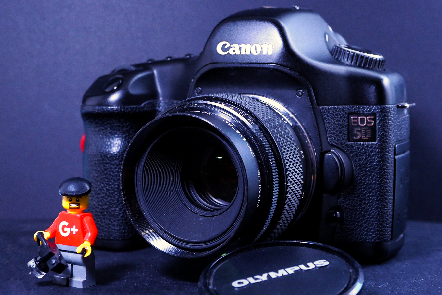 Canon 5D with a Zuiko OM mount 50mm f2.0 Macro