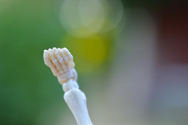 Pose Skeleton foot