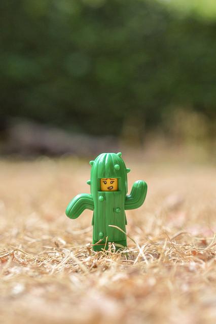 LEGO cactus