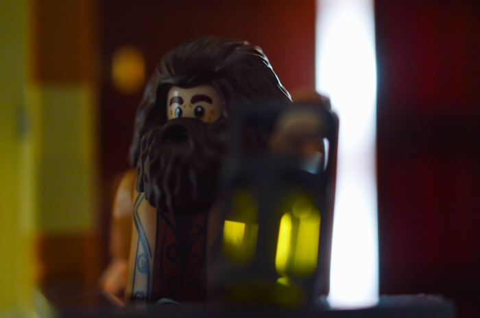 Hagrid watches over the grounds at night.
