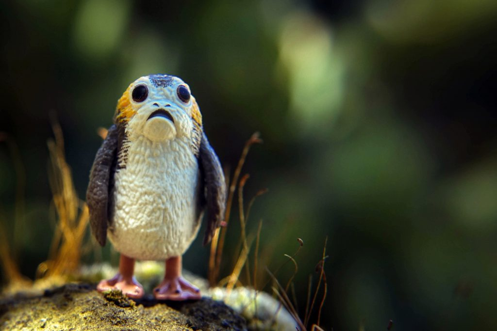 BBTS Star Wars Black Series review and giveaway: Porg!