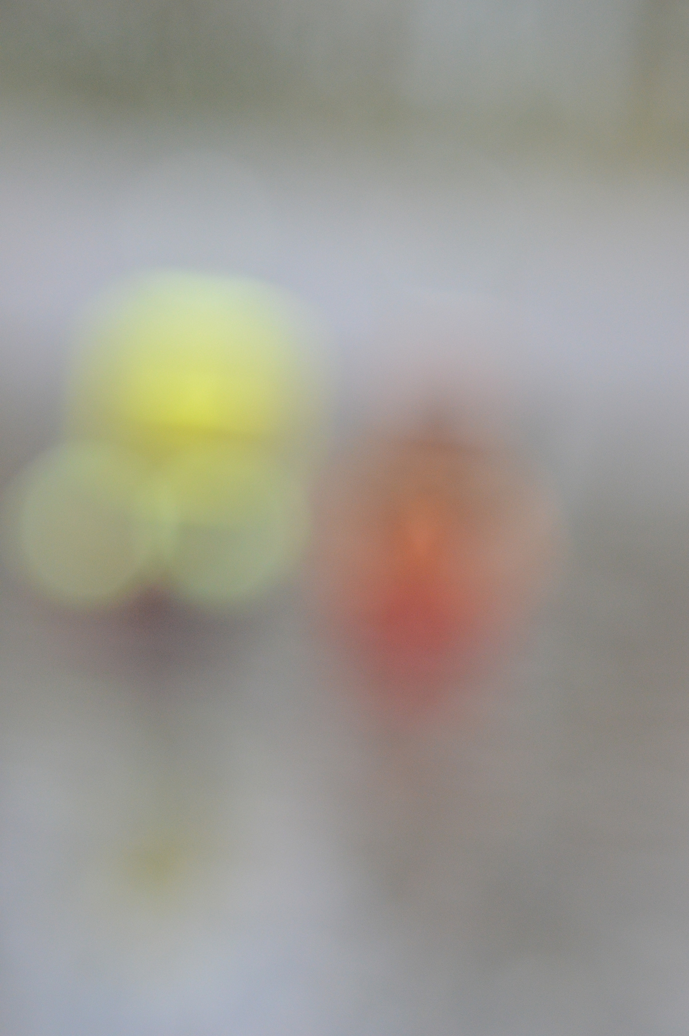 Toys out of focus