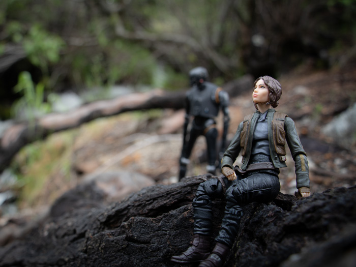 Jyn and K-2SO in the woods by @teddi_toyworld