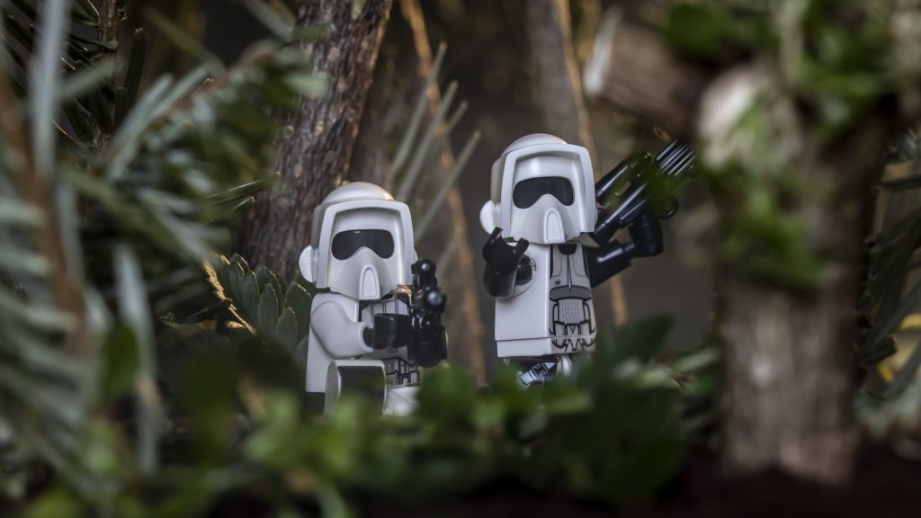 Endor: patrol at dawn