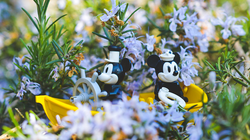 LEGO Micky and Minnie