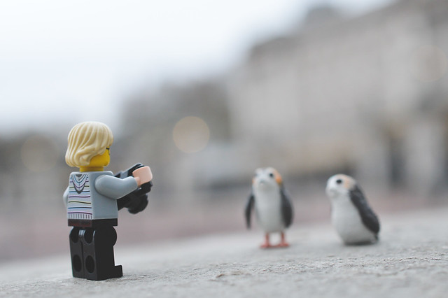 Minifigure taking a photo of Porgs
