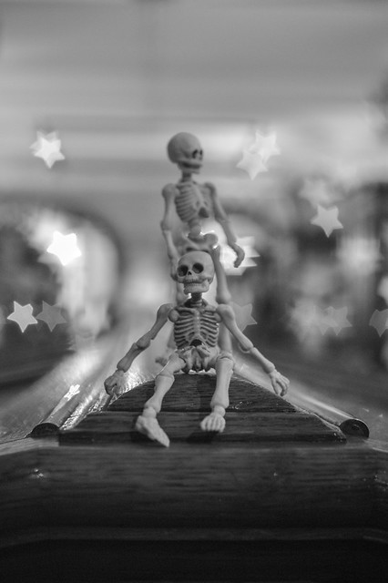 Two toy skeletons in a museum surrounded by stars