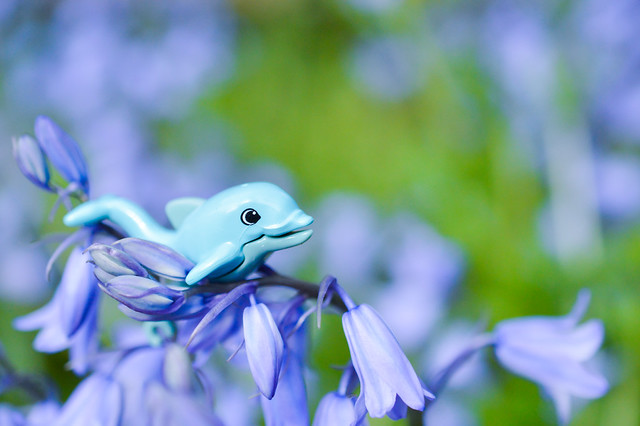 Toy dolphin in flowers