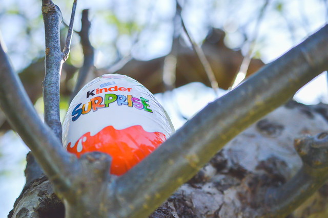 Big Kinder Surprise in a tree
