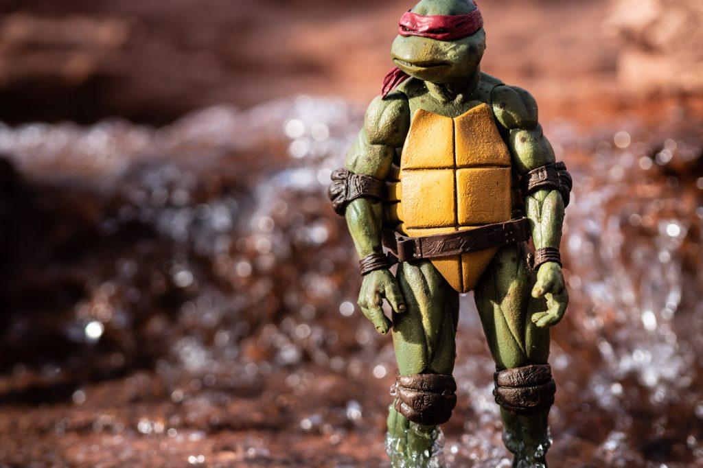 Raphael standing in water