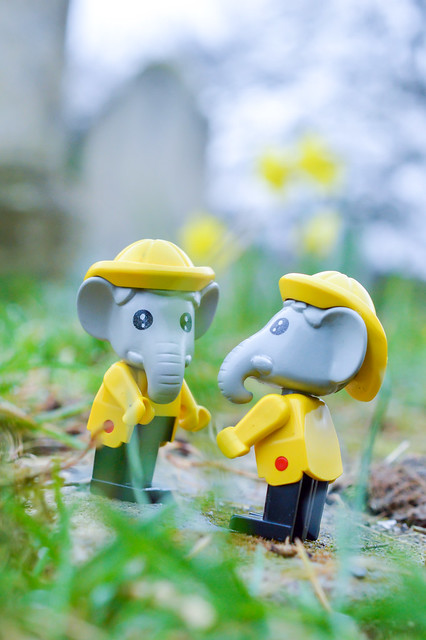 Two LEGO Fabuland elephants in a graveyard