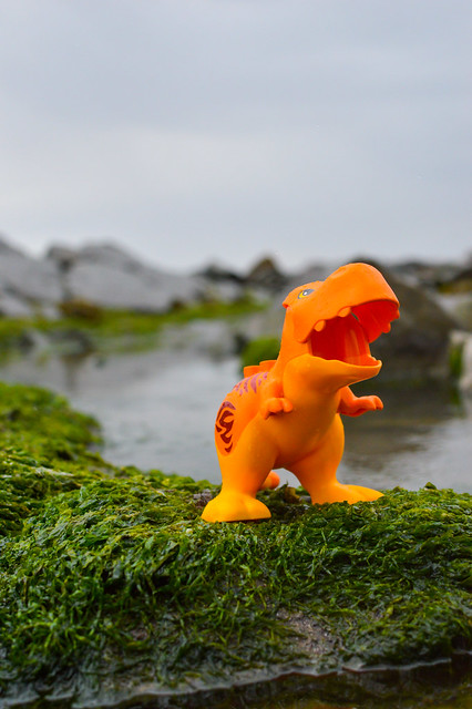 Dinosaur on Kilve Beach