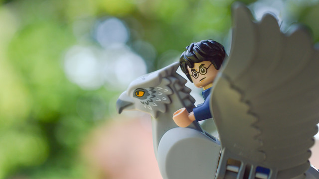 Harry riding Buckbeak