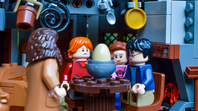 The trio watch an egg with hagrid