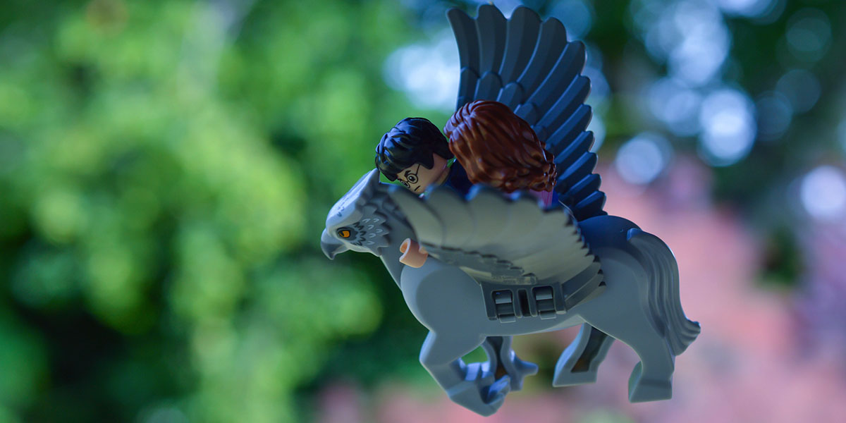 Hagrid's Hut: Buckbeak's Rescue (A toy photographer's review)