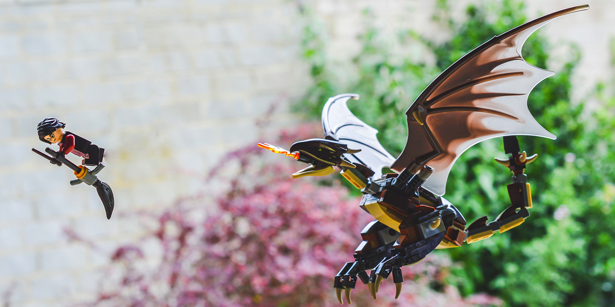 Harry Potter and the Hungarian Horntail (a toy photographers