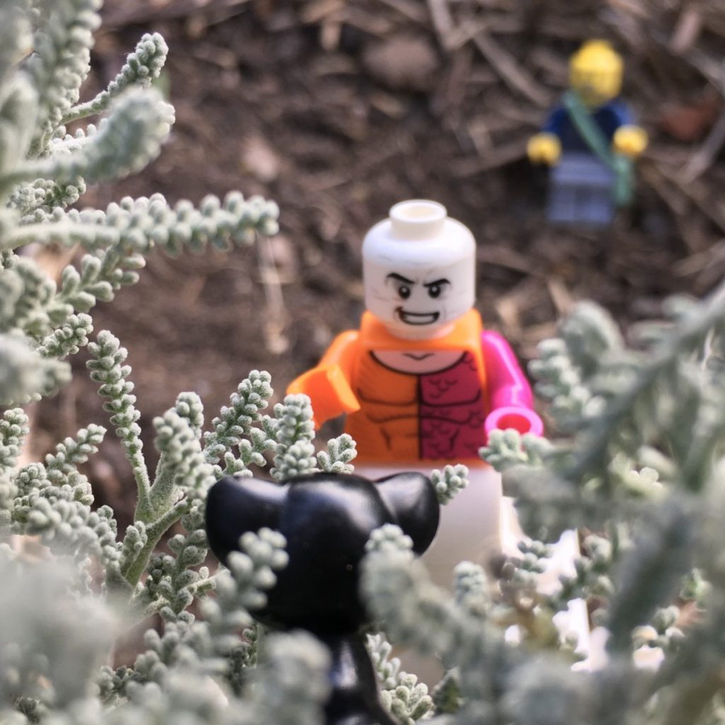 Photo by Adam Ford: A LEGO minifigure scene - DC superhero Metamorpho rescues a cat from a tree