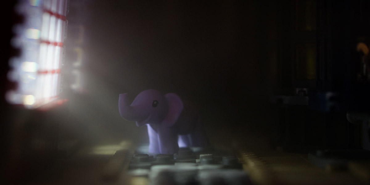 Little Elephant on Adventures
