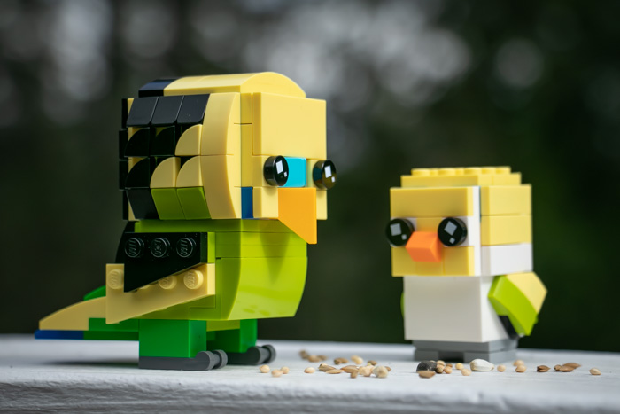 LEGO's new Brickheadz Pets Budgie and Goldfish are put through their paces in this review by toy photographer Teddi Deppner.