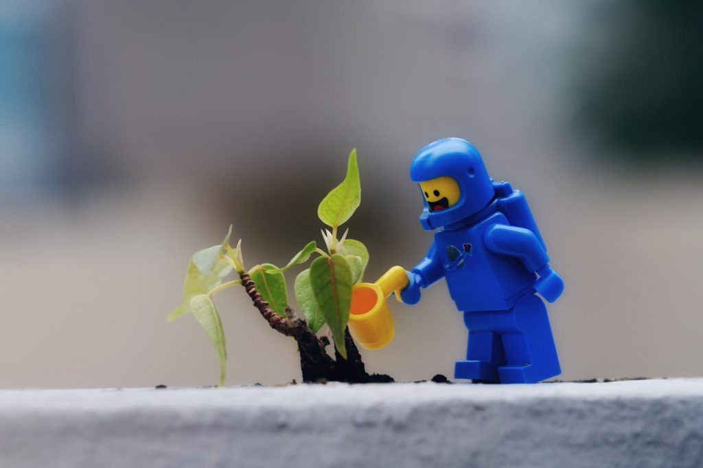 Six Ways to Save the Earth 6IN - tree planting