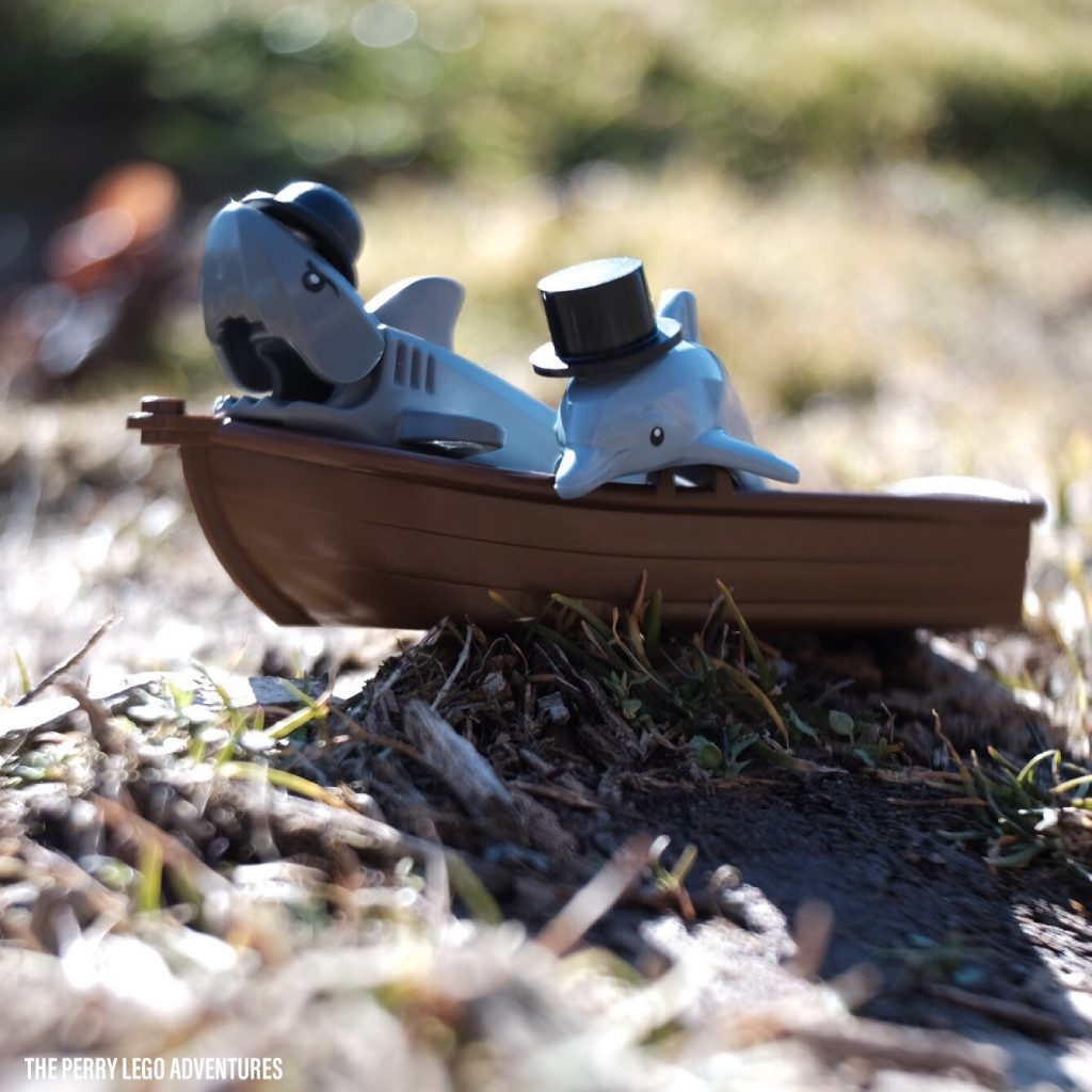 Dolphin and shark in a boat by theperrylegoadventures