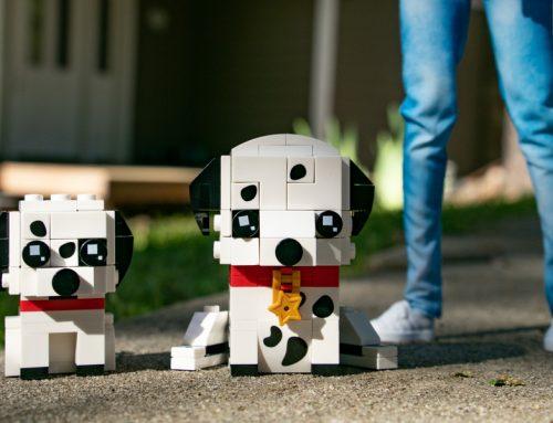 Brickheadz Pets Dalmatians – A Toy Photography Review