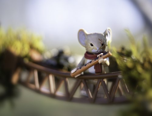 Framing Your Toy Photography Subject