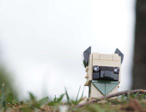 LEGO Animal BrickHeadz: A Difficult Review