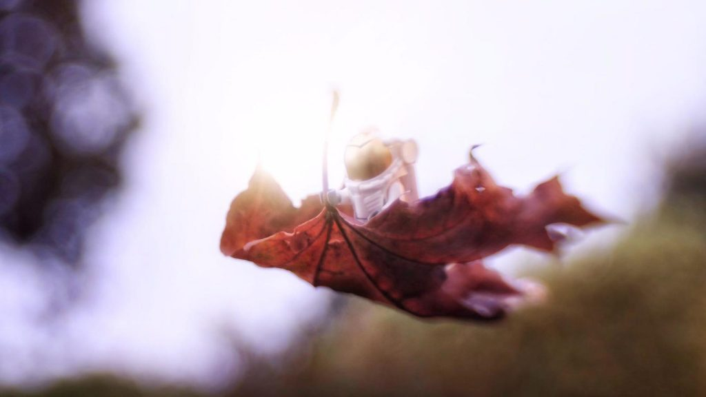 Lego astronaut minifigure flying on the leaf