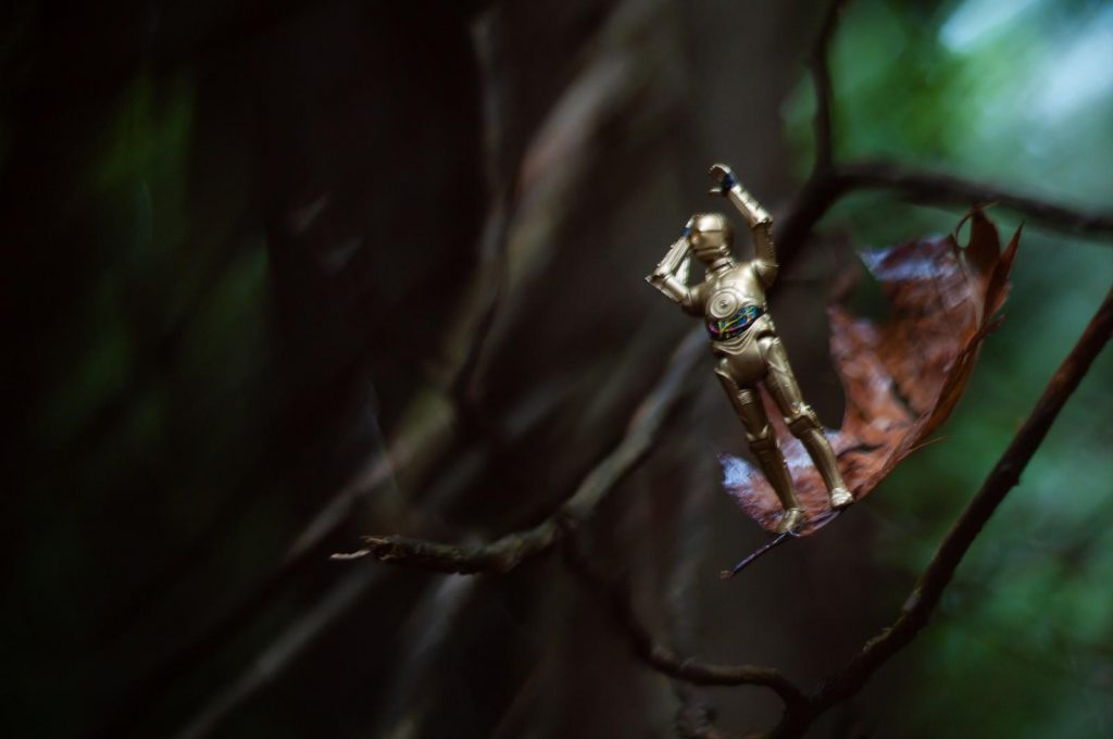 C3-PO action figure falling from the tree on the leaf