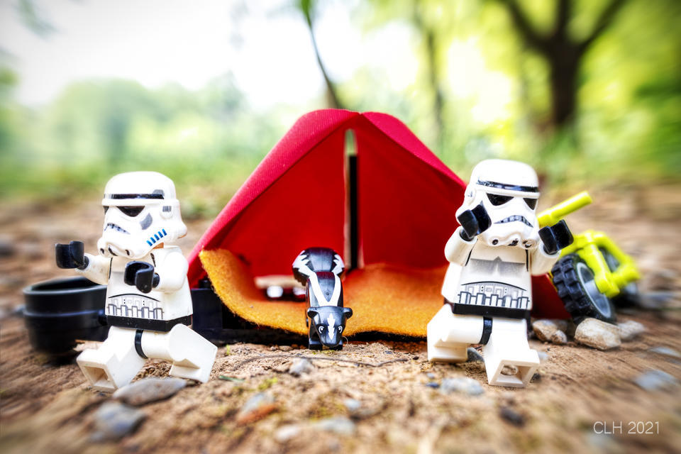 LEGO Stormtroopers running from the skunk
