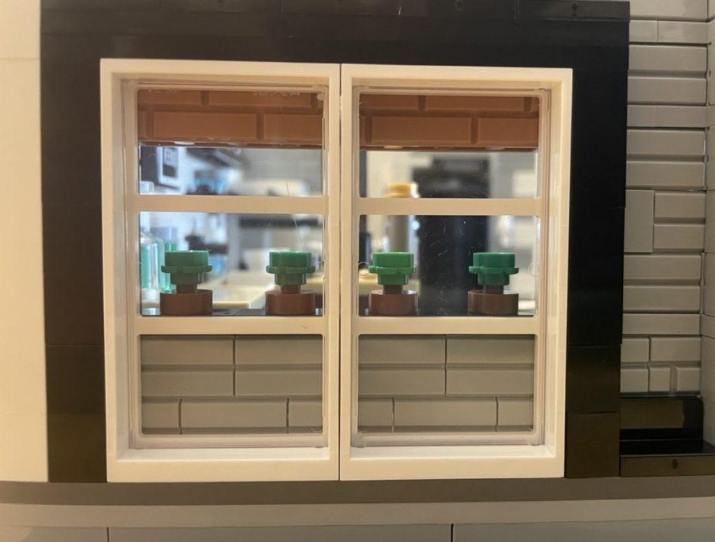 Window The LOFT